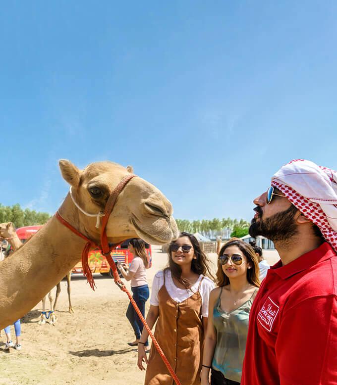 Desert Tour Bahrain